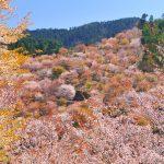 日本の美しい村22選。守りたい風景がここにはある。