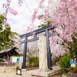 お花見ついでに立ち寄りたい!松陰神社周辺の個性派店3選