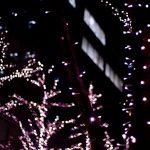 東京駅のイルミネーションを今年は見に行きたい!東京ミチテラスへの詳しい場所やアクセス方法教えます!!