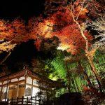 京都のイベントは日帰りでも行きたいほどだった。24個のまとめ