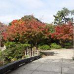 家族でのんびり楽しむ富山旅行ならここ!高岡古城公園