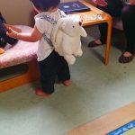 十勝川温泉〜大迫力のベアマウンテンでヒグマの生態観察