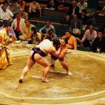 墨田区にある「相撲博物館」について。国技の相撲を知ろう!