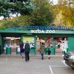 岡山の動物園を知りたい!2施設で会える動物詳しく教えちゃいます!