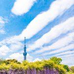 カップルプランあり♪東京・千葉を欲張りたい方へおすすめの亀戸のホテル3選