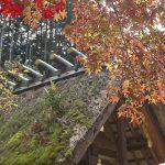 厄除けや縁結びのご利益がある!京都にある「日向大神宮」の見どころ